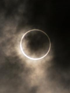 金冠日食4