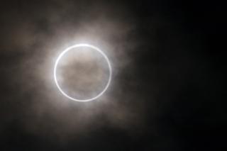 金冠日食5